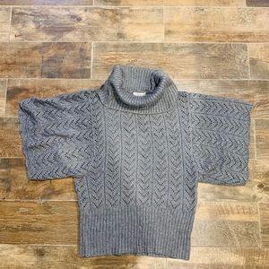 Dress Barn short sleeve turtleneck sweater